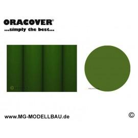 Bügelfolie hellgrün 0,5m